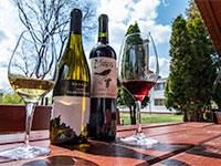 Két balatoni bor, egy Olaszrizling és Cabernet Franc lettek  a XIII. Országos és Nemzetközi Bio Borverseny csúcsborai!